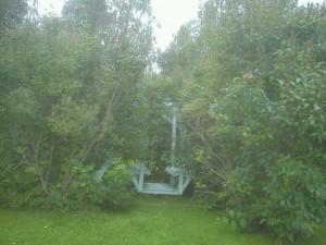 Det var tjockt med grenar, många var dödade och skadade.