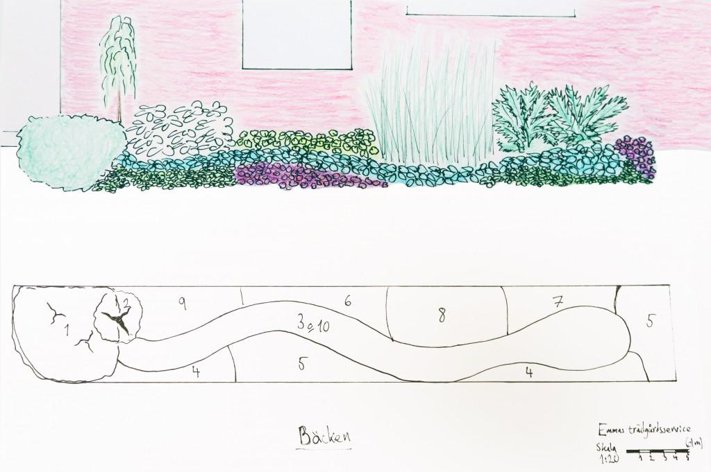"""Trädgårdsritning """"Bäcken"""""""